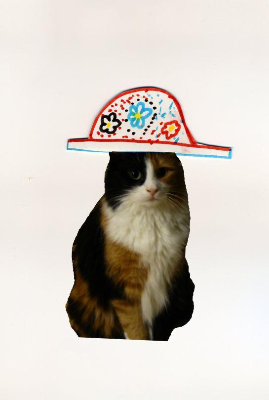 chat avec chapeau mini