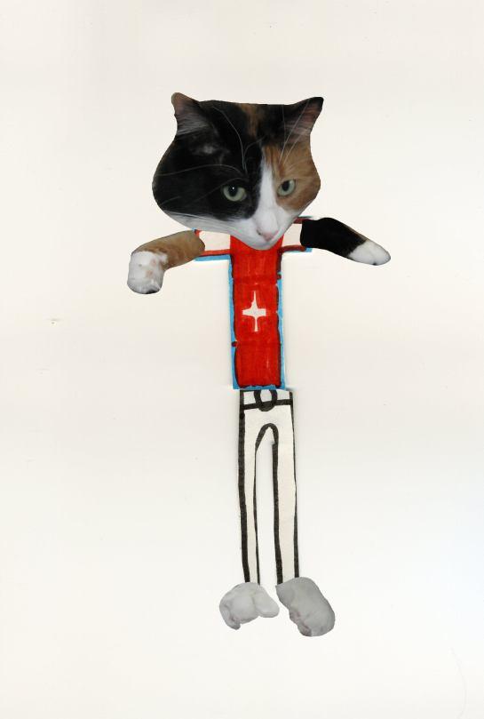 chat avec pantalons mini