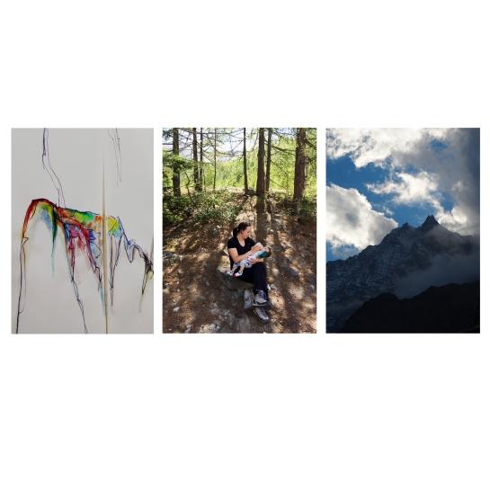tryptique-montagne-3